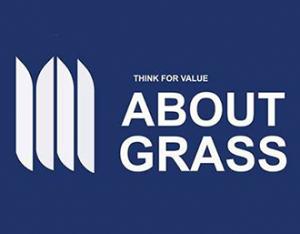 about grass